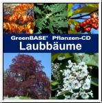 GreenBASE Pflanzen-CD Laubbäume