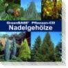 GreenBASE Pflanzen-CD Nadelgehölze