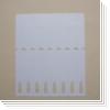 Schlaufenetiketten TF8r20CD (250x26 mm)