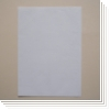 Selbstklebeetiketten LEON8S/P (99x67 mm)